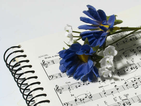 Flower on music