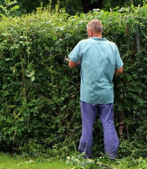 Spiritual exploration - peeking over the hedger